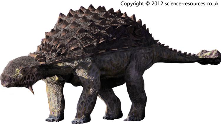 Fossils - Beyond Fossils